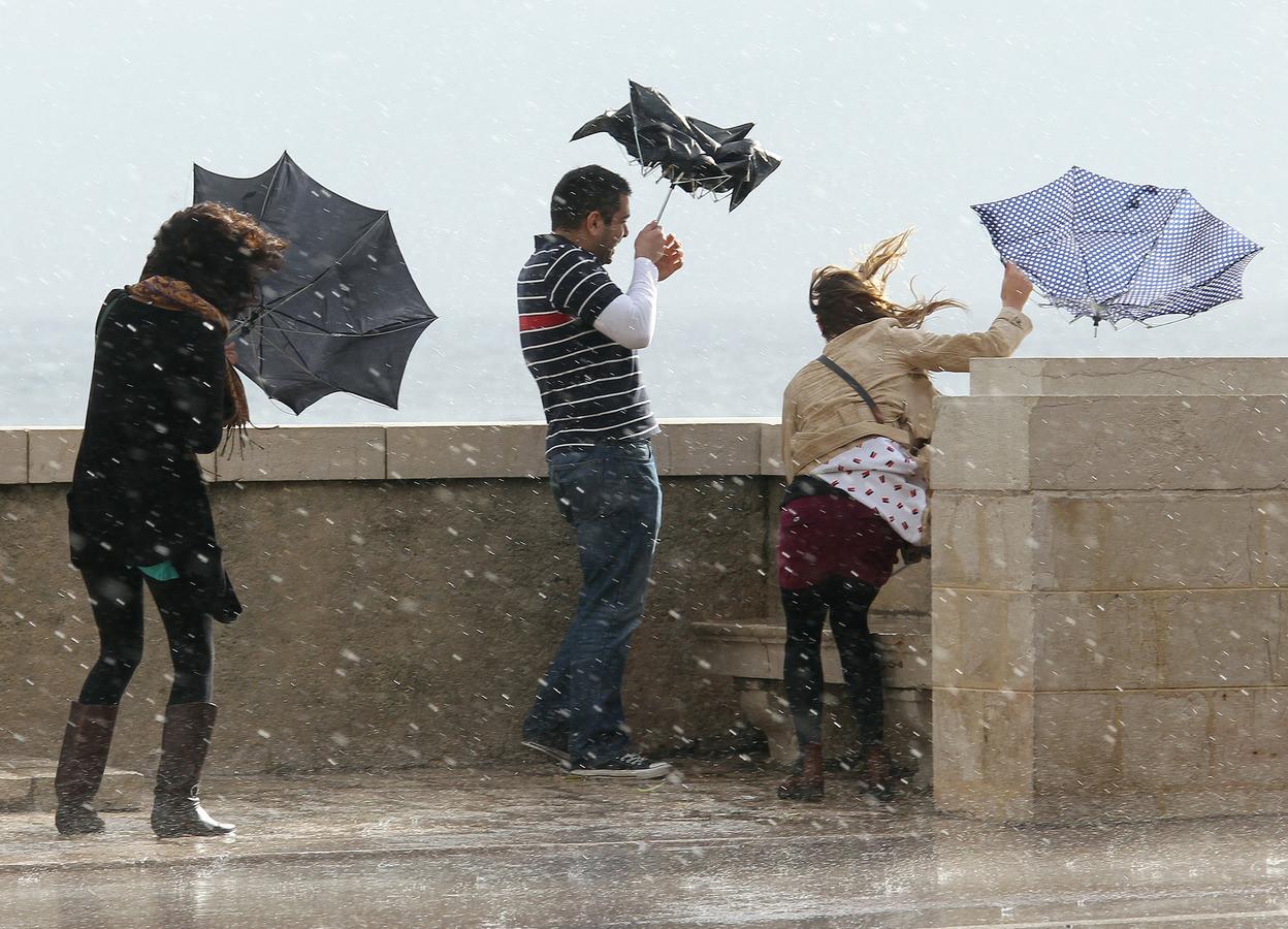 Дождь в питере картинки прикольные